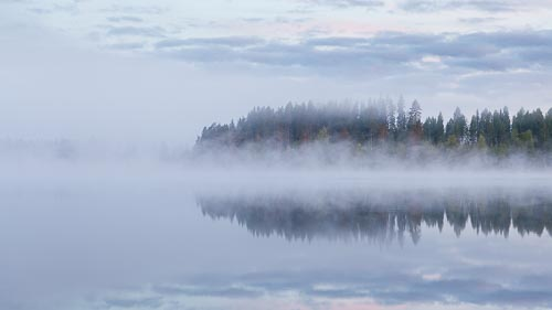 fog lake dawn reflection