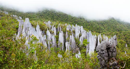 pinnacles borneo panorama