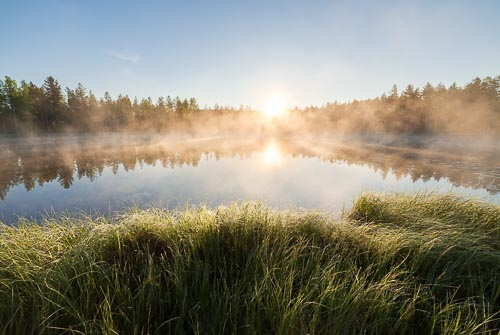 sunrise forest pond Finland